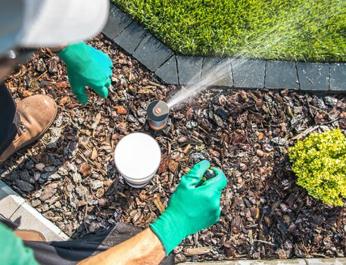 Are You Over-Watering Your Lawn?