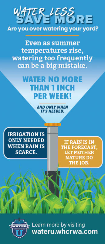 Water no more than 1 inch per week