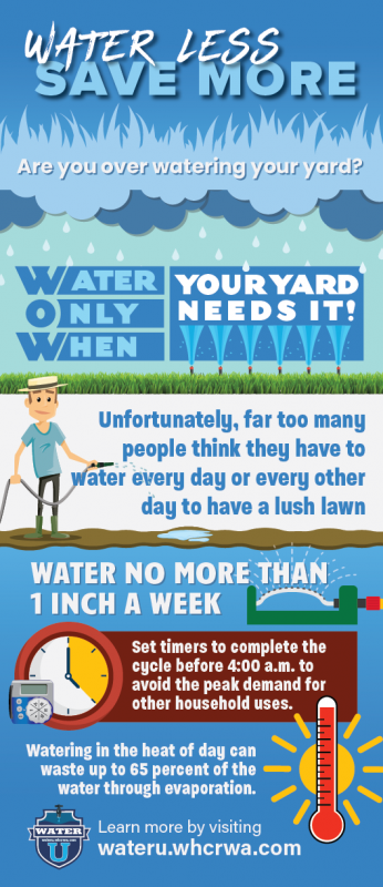 Water only when your yard needs it